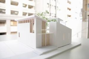 旗竿地に建つ家 アルファテクトアソシエイツ 模型
